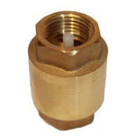 Nylon Disc Spring Check Valve
